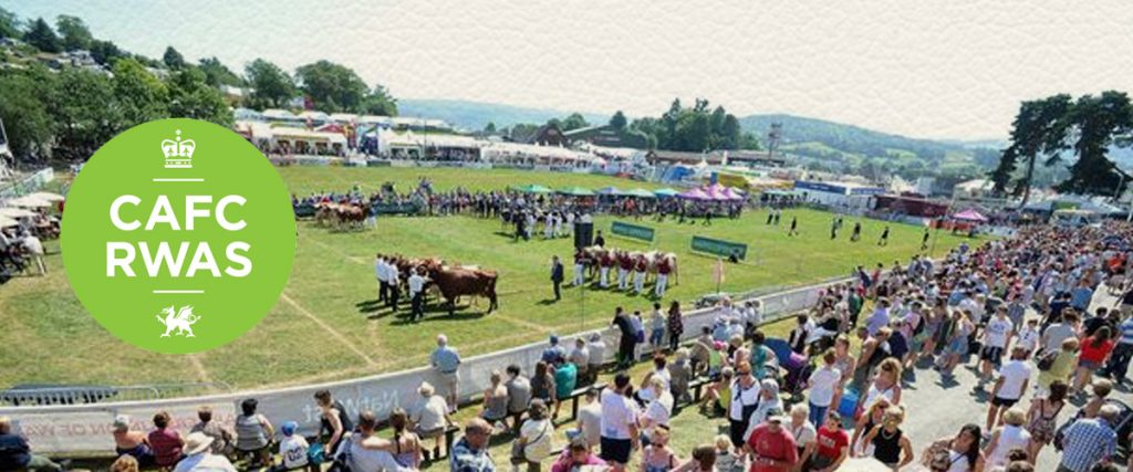 Condessa Royal Welsh show